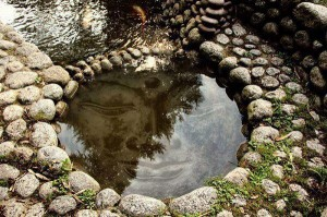Buddha-Pond-300x199